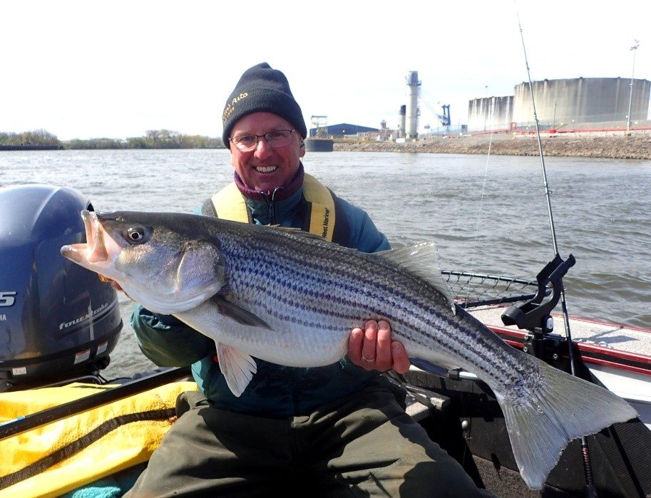 Dave Berdar of Waterford shows off the 34-inch, 22-pound striper he recently caught.