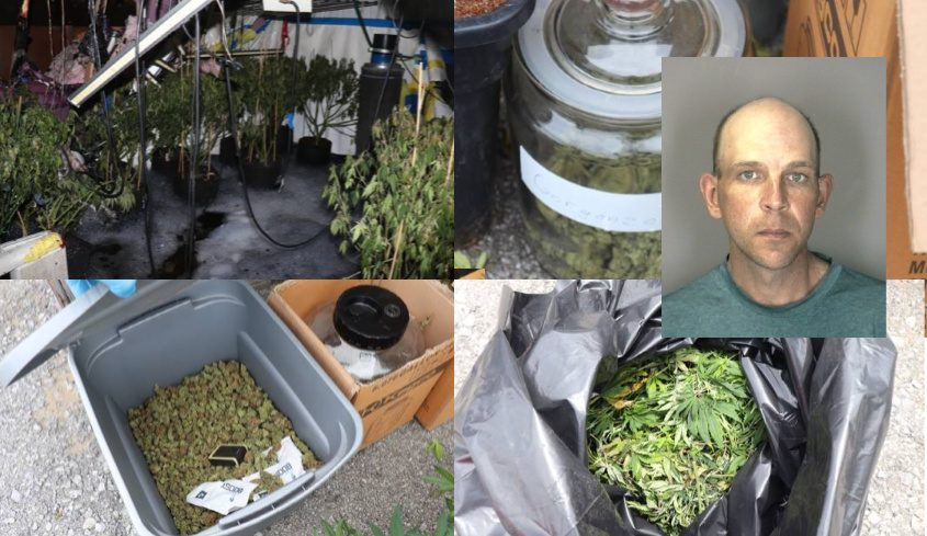 The seized marijuana and Jason R. Teagle