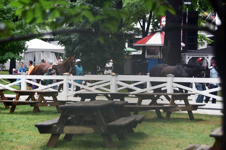 Horses make their way to the paddock after a heavy rain fall at Saratoga Race Course, July 17, 2019.